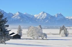 W0208 Wintertag am Bannwaldsee