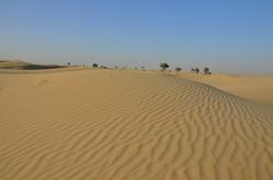 Dubai (73).jpg