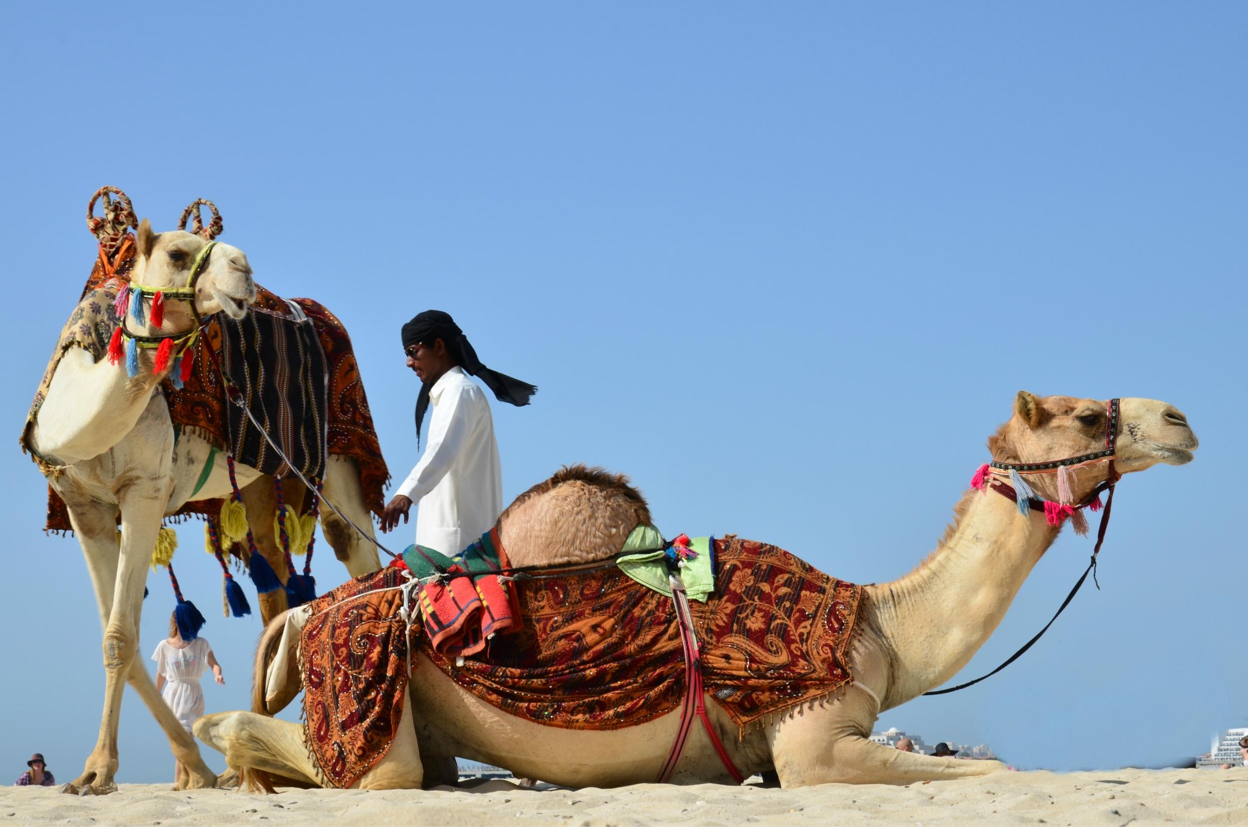 Dubai (31).jpg