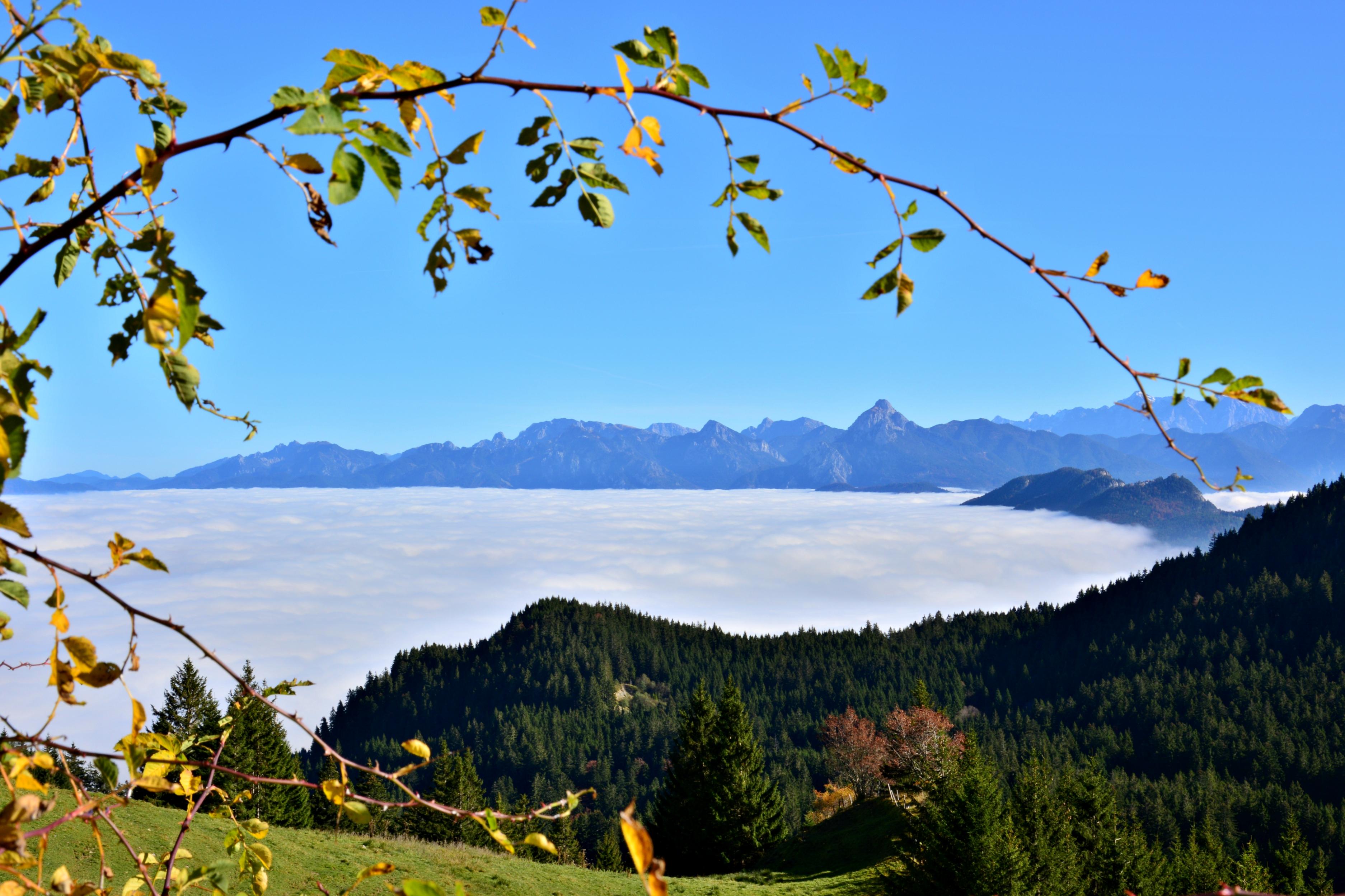 A0151 Blick auf das Wolkenmeer von der Kappeler Alm.jpg