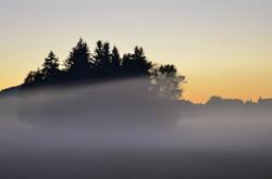 H0136 Nebelmorgen.jpg