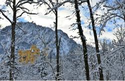 B0048 Hohenschwangau im Winterwald