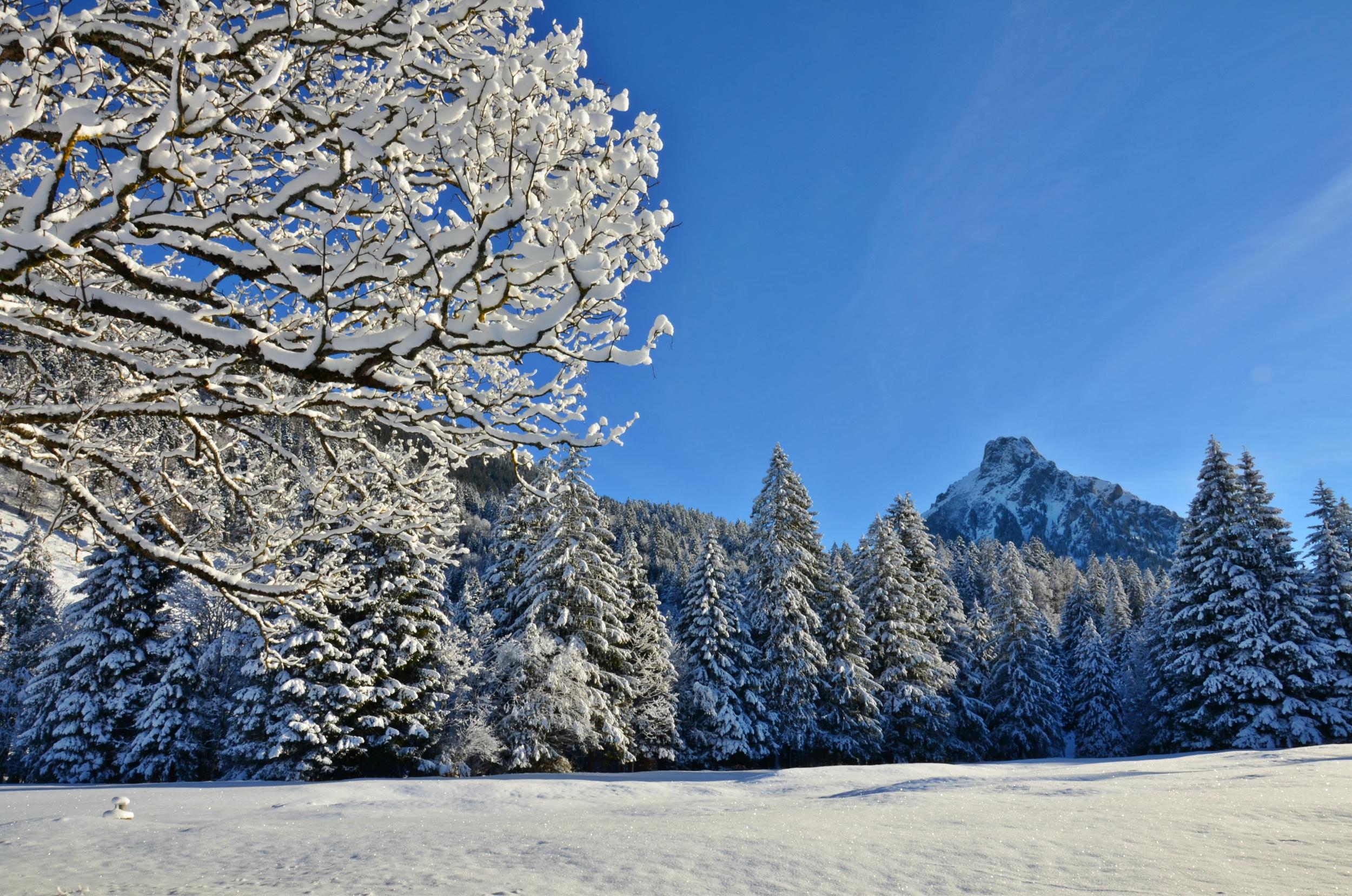 W0087 Achtal Wintertraum.jpg