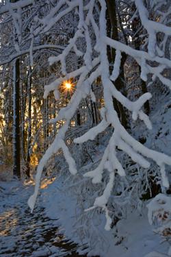 W0304 Winterwunderland.jpg