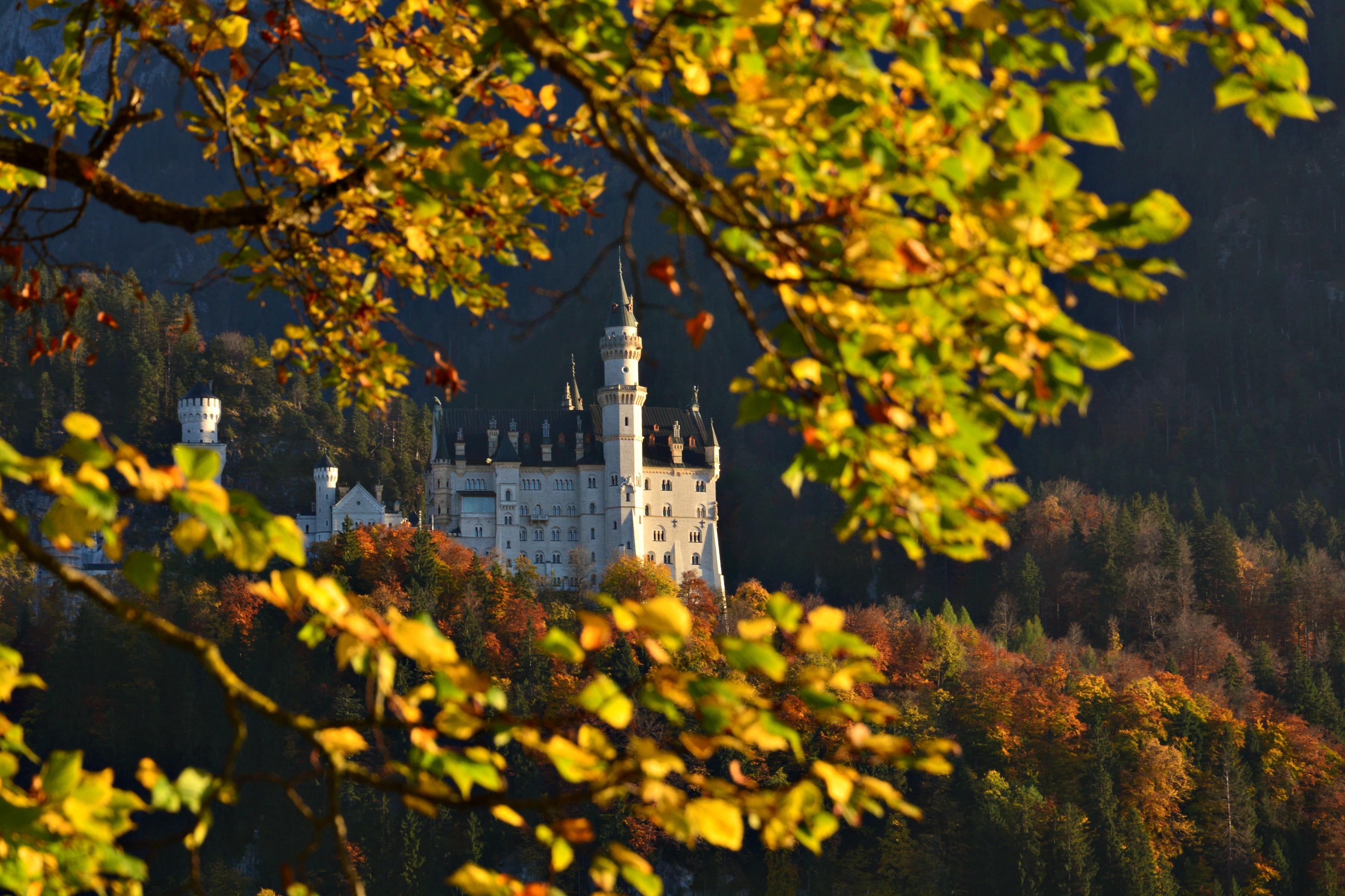 B0111 Schloss Neuschwanstein im Herbstkleid.jpg