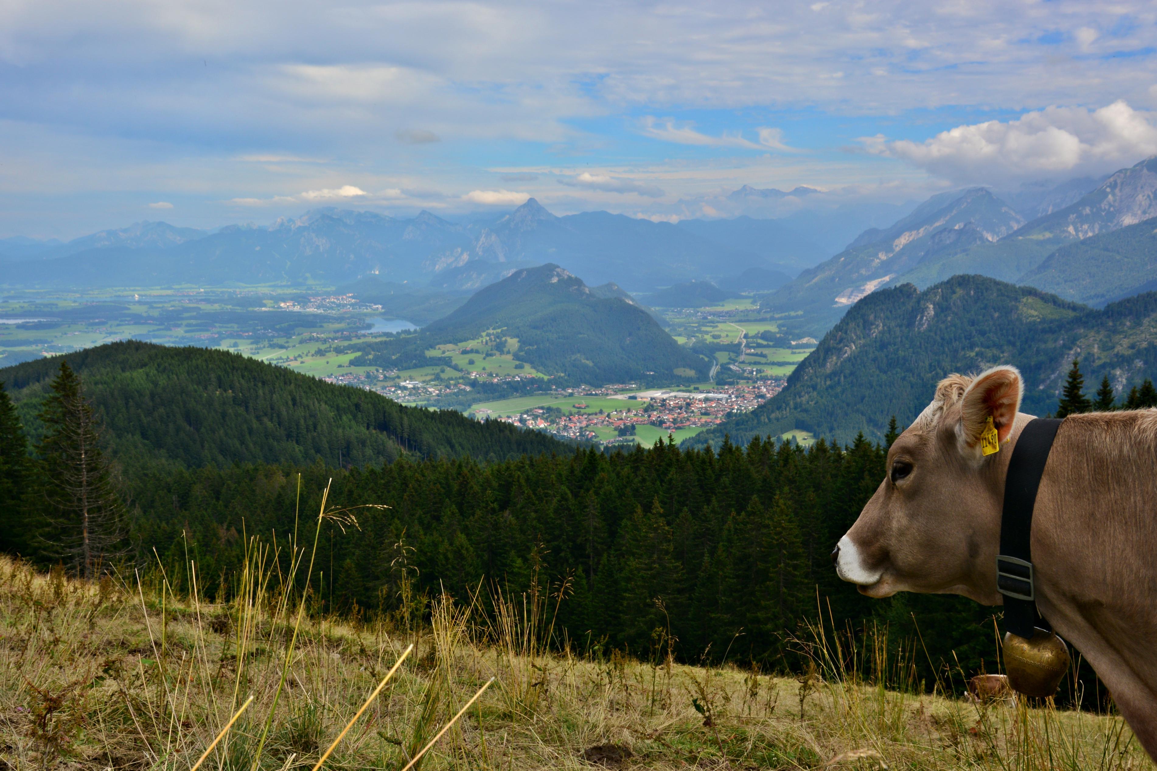 A0209_Schumpen_Blick_ins_Füssener-_und_Pfrontener_Tal_Alpspitz.jpg