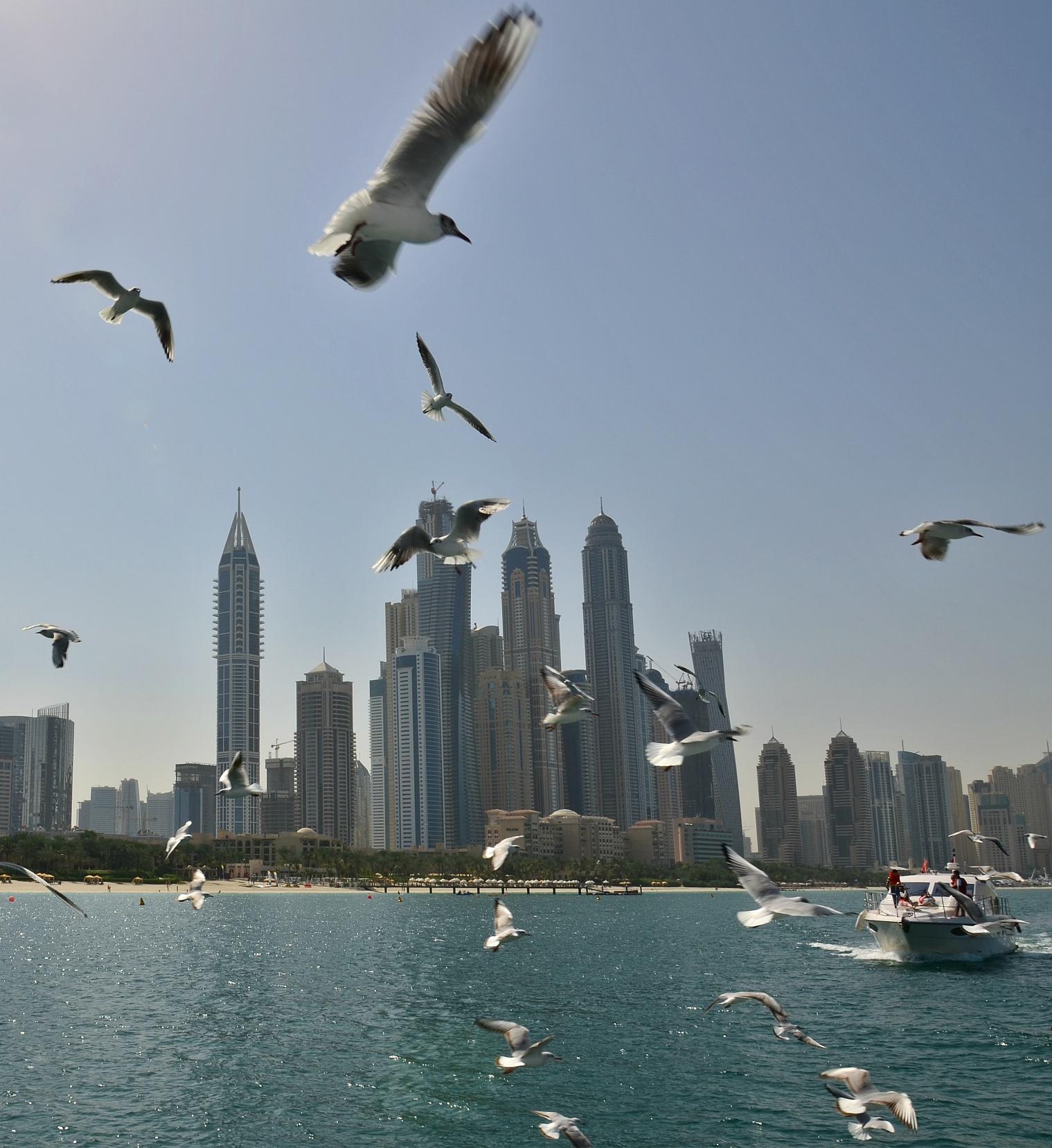 Dubai (101).jpg