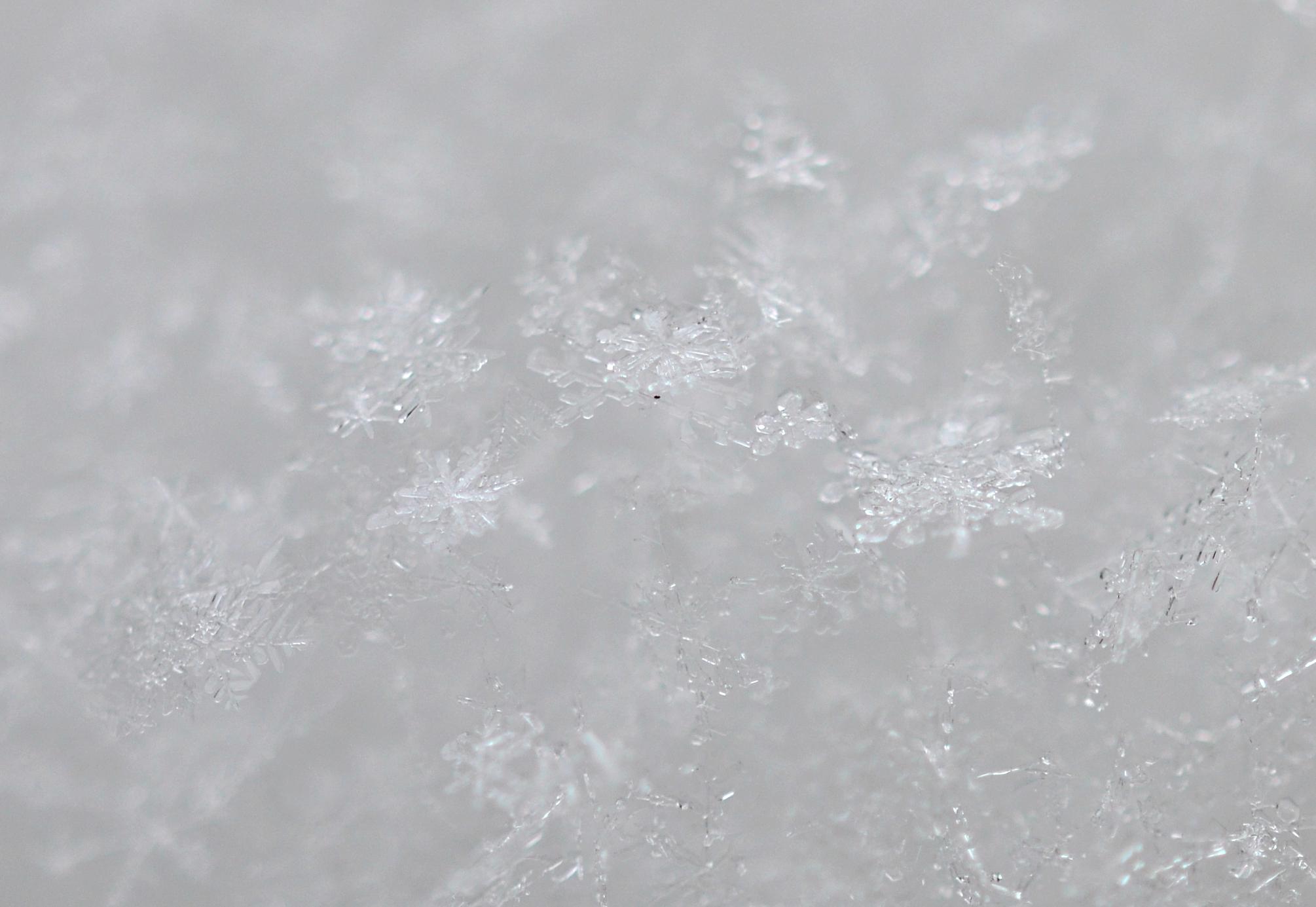 M0102 Schneeflocken.jpg
