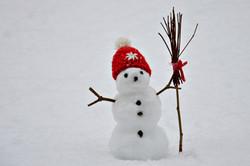 W0157 frostiger Freund.jpg