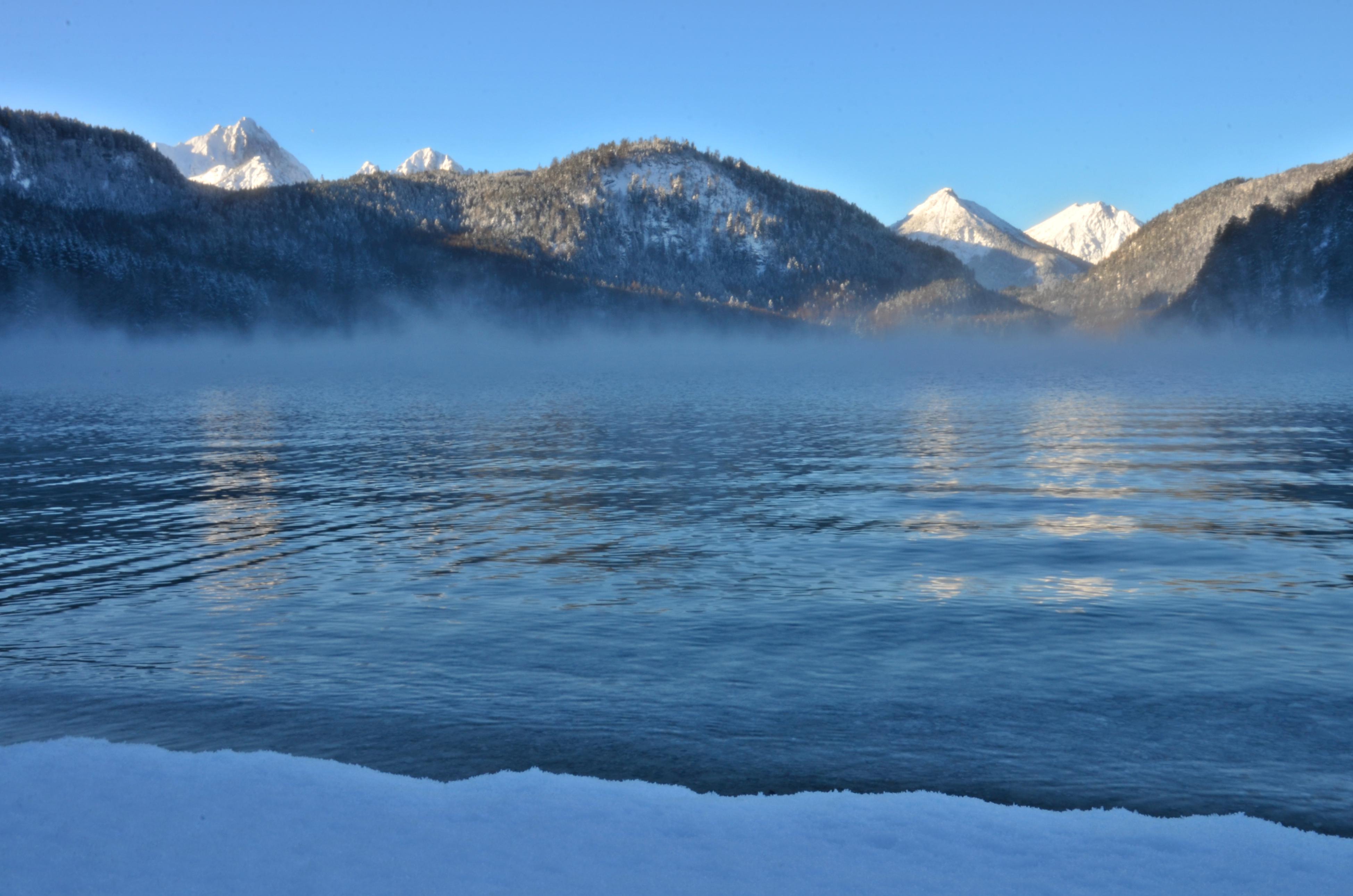 G0241 Wintermorgen  am Alpsee Hohenschwangau