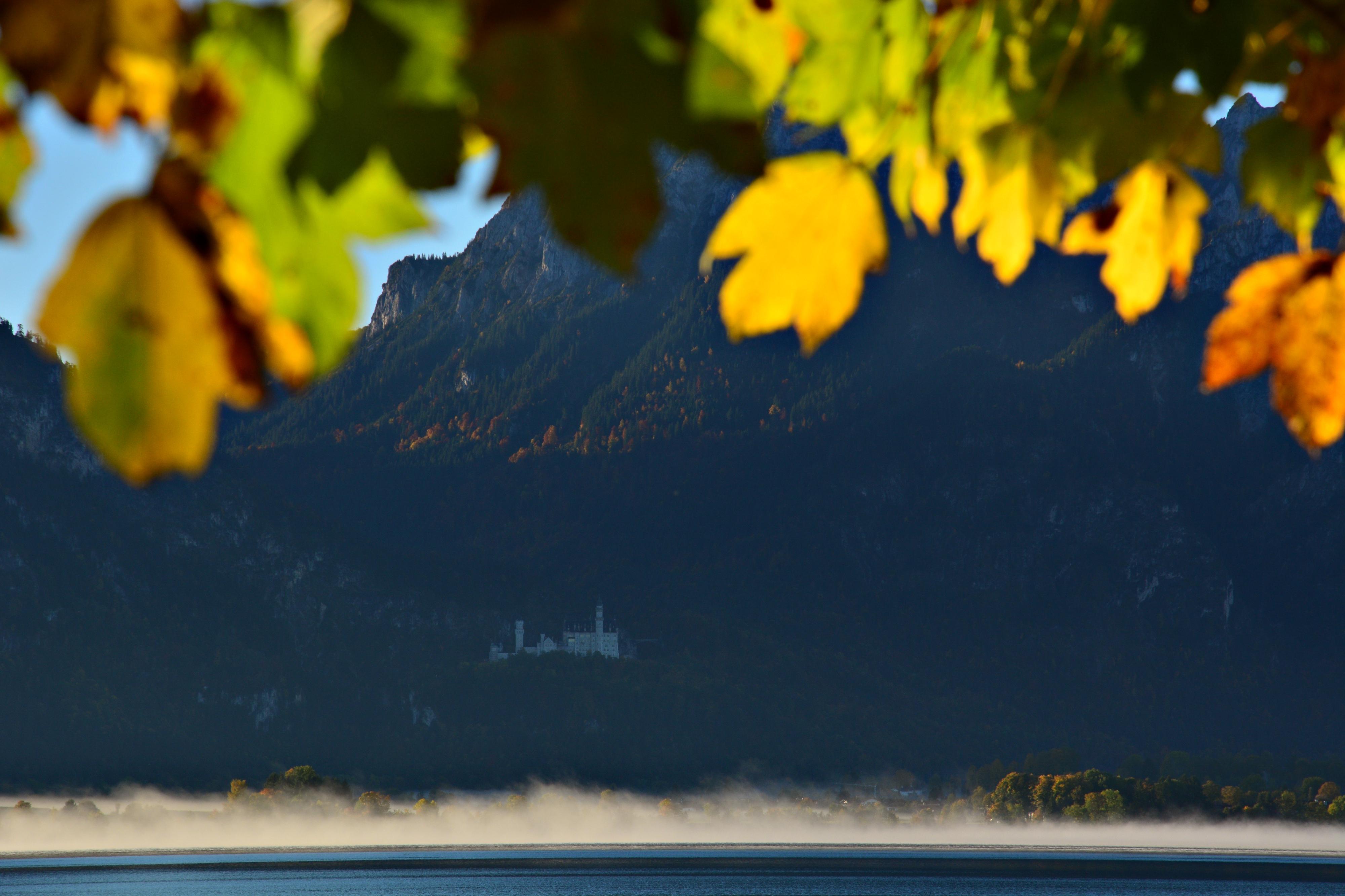 G0392 Herbstmantel um Schloss Neuschwanstein.jpg
