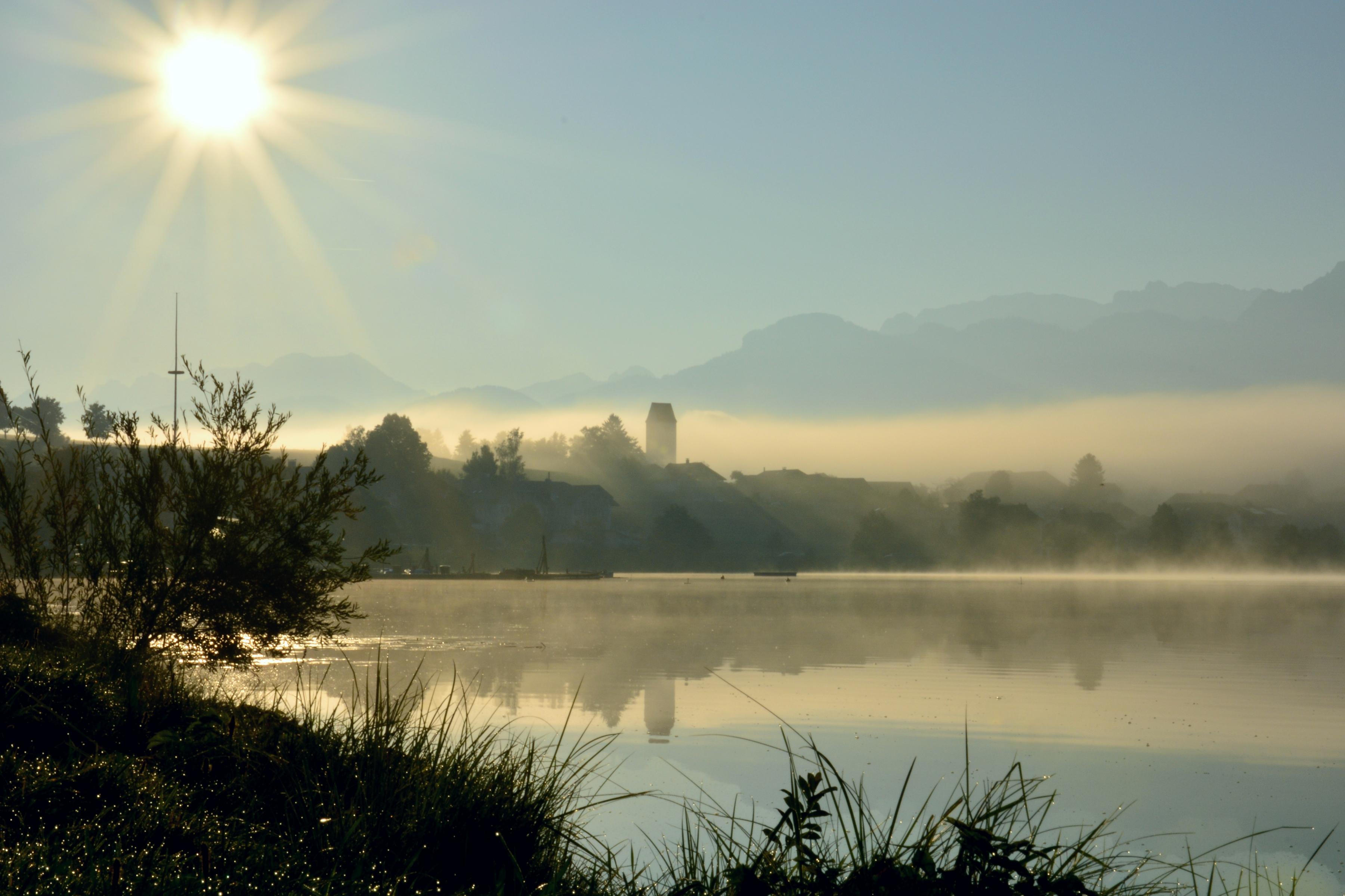 G0315 Nebelmorgen am Hopfensee.jpg