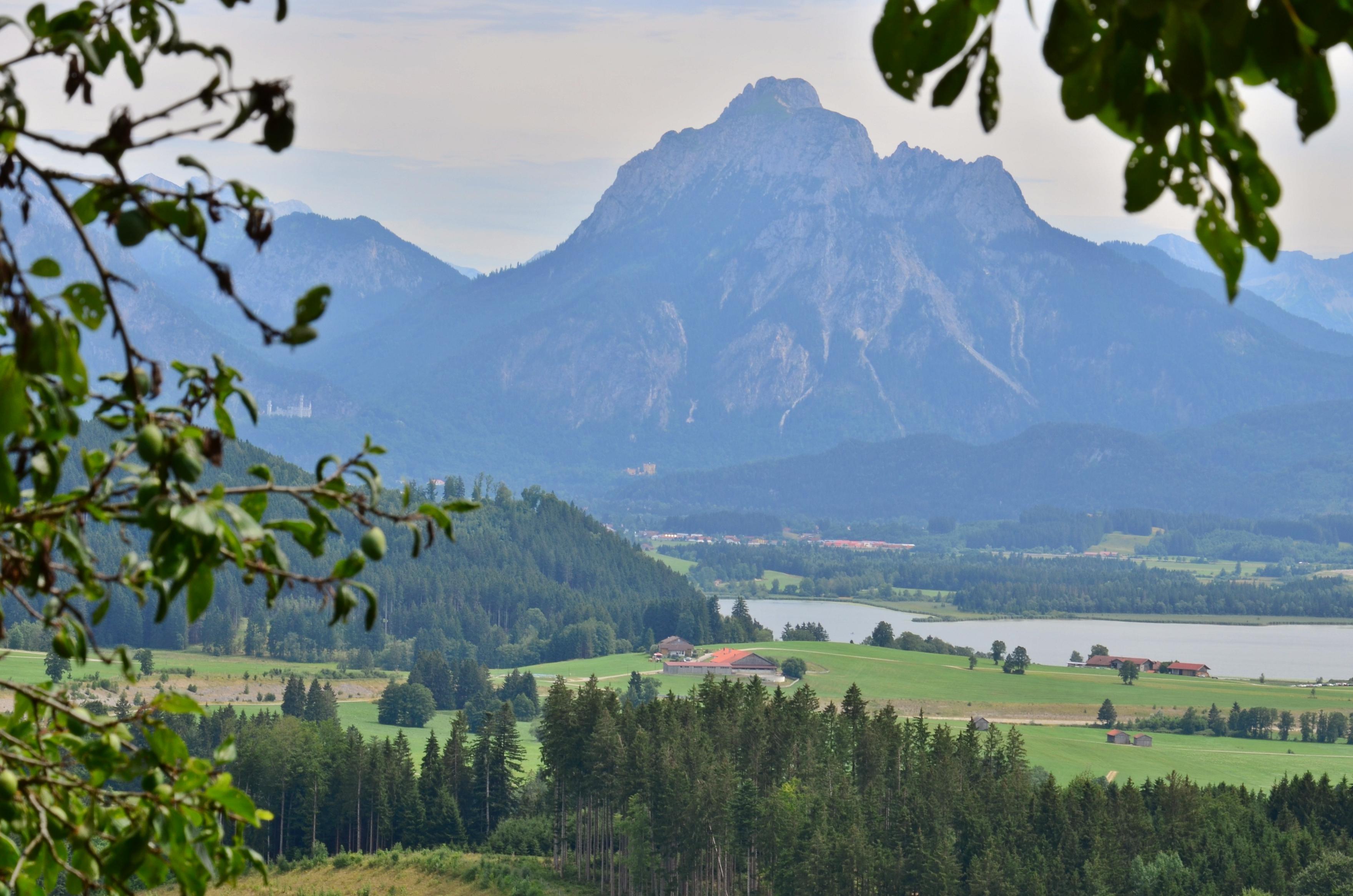 A0075 Alpe Beichelstein Blick auf Hopfensee.jpg