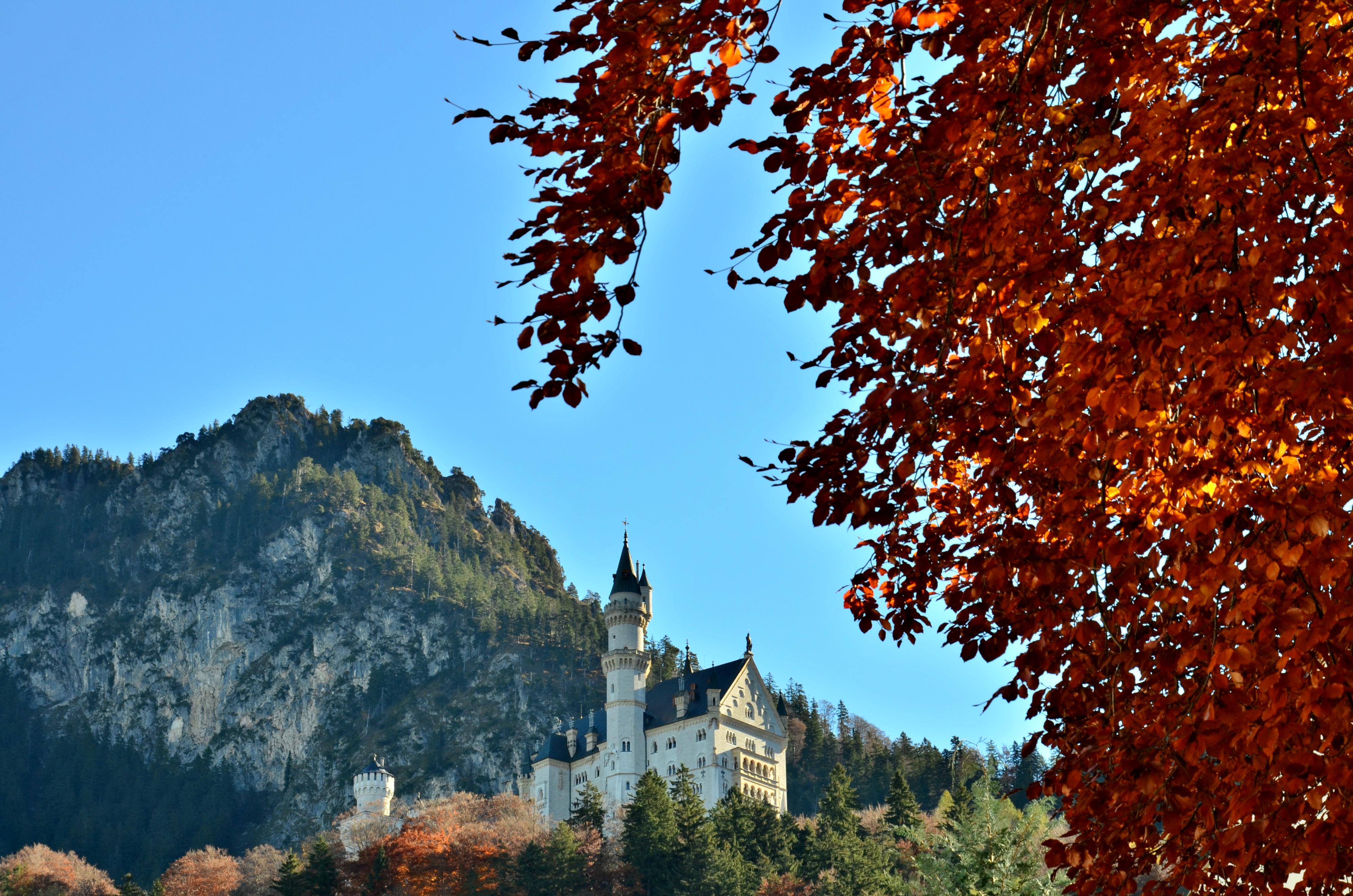 B0072 Herbstlaub am Schloss Neuschwanstein.jpg