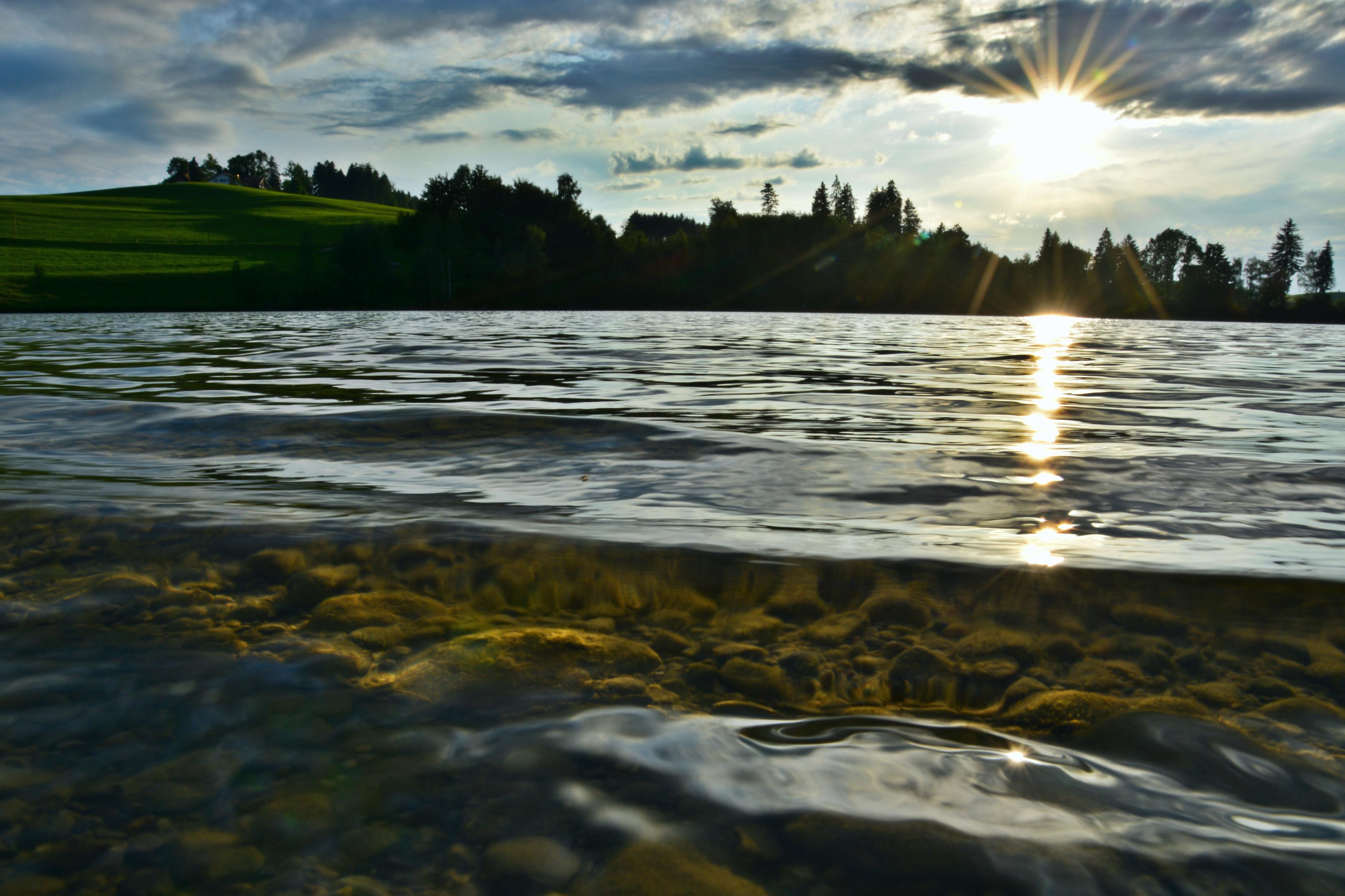 G0368 Abendsonne am Schwaltenweiher.jpg