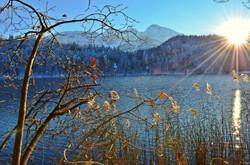 G0078 Herbst trifft Winter am Alatsee