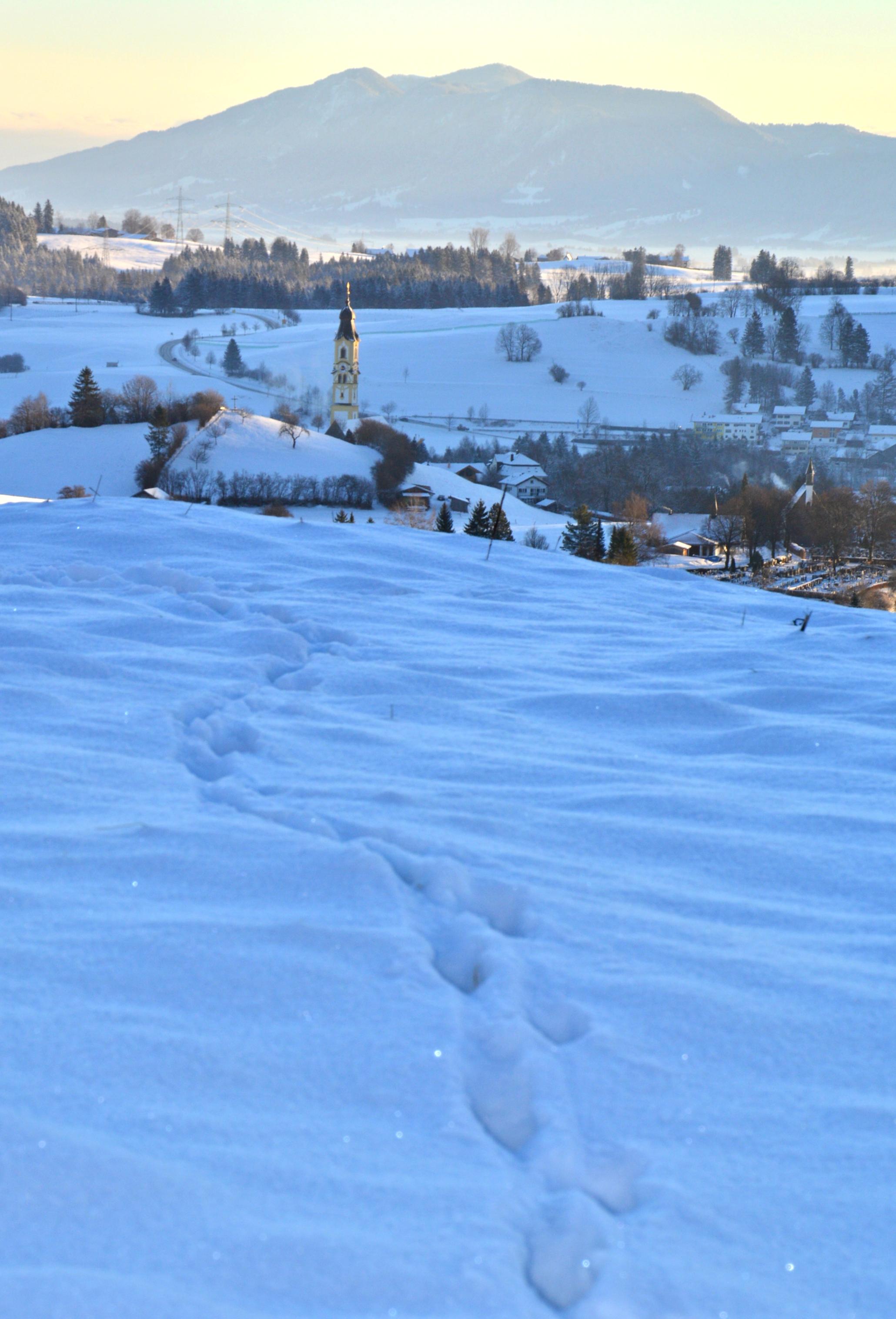 W0270 Spuren im Schnee Pfronten Kirche.jpg