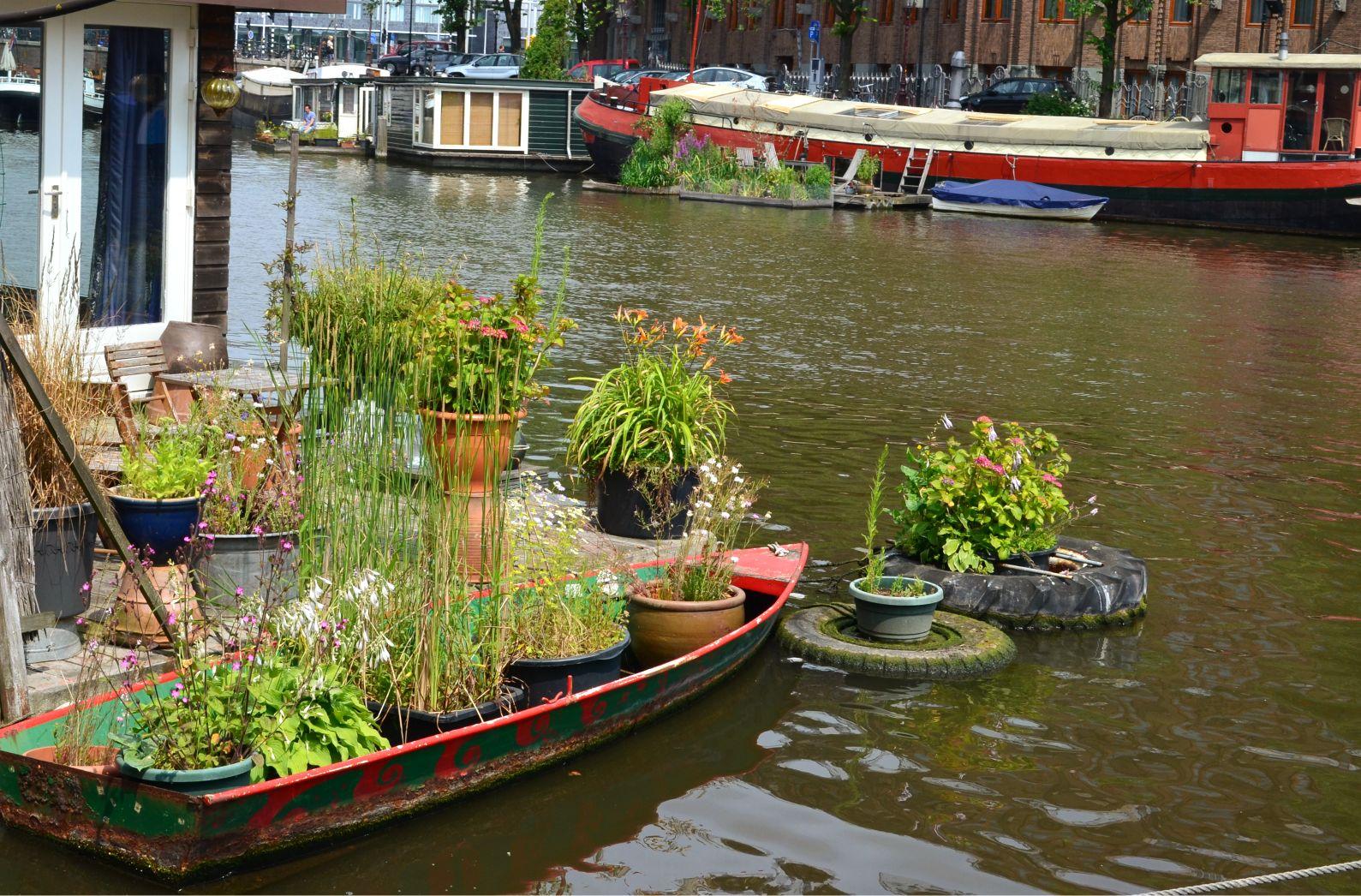 Amsterdam (12).jpg