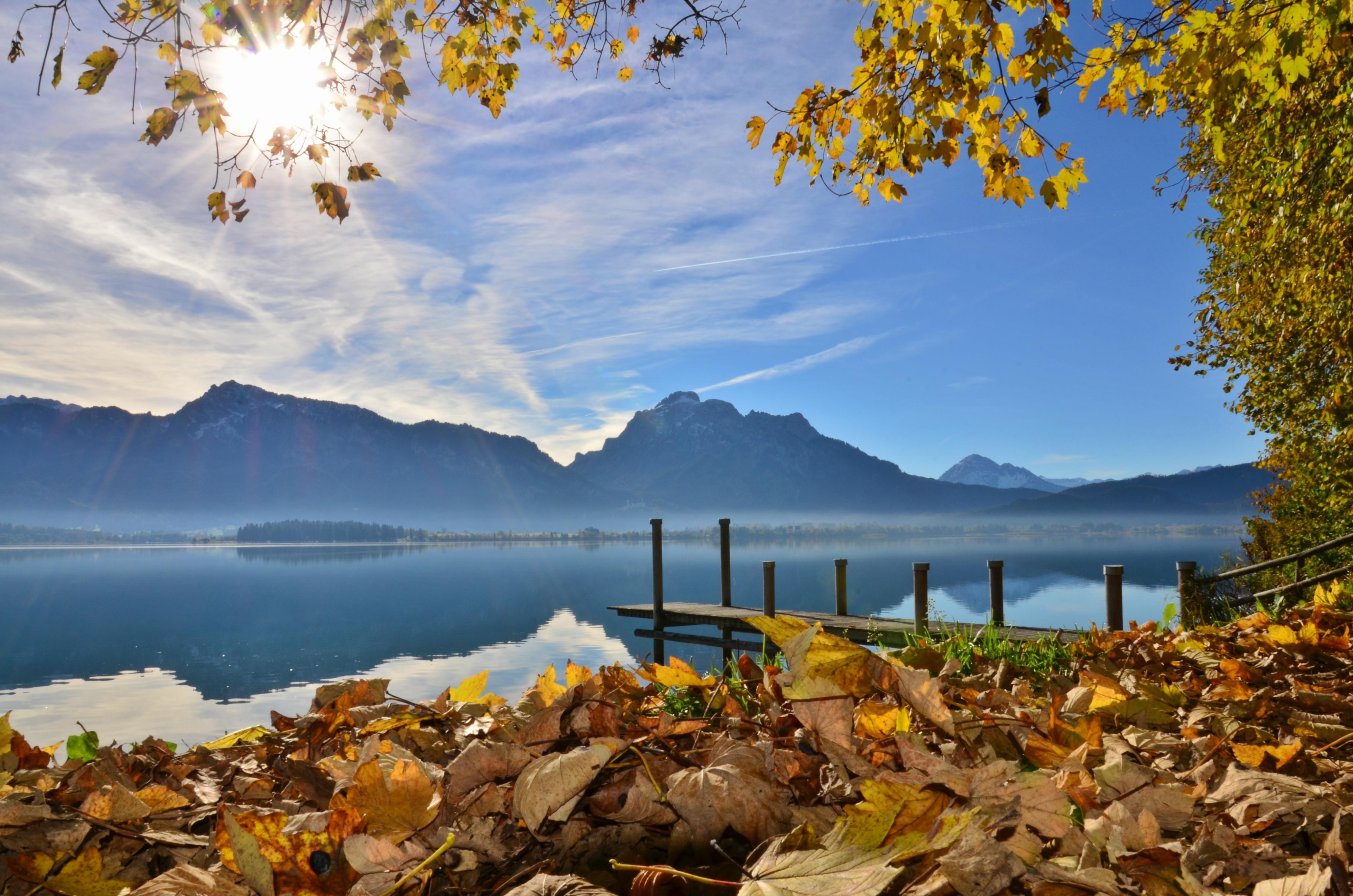 G0211 Herbstsonne am Forggensee.jpg