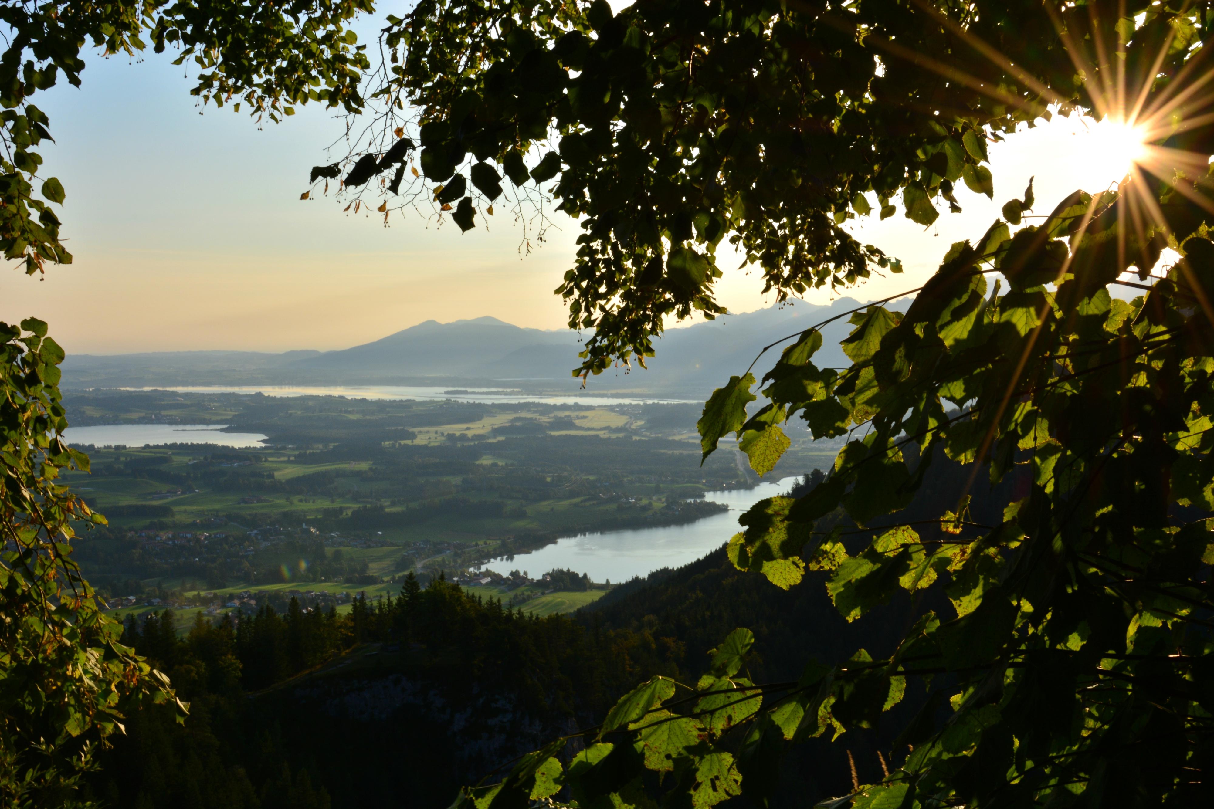 A0166 Sonnenmorgen am Falkenstein.jpg