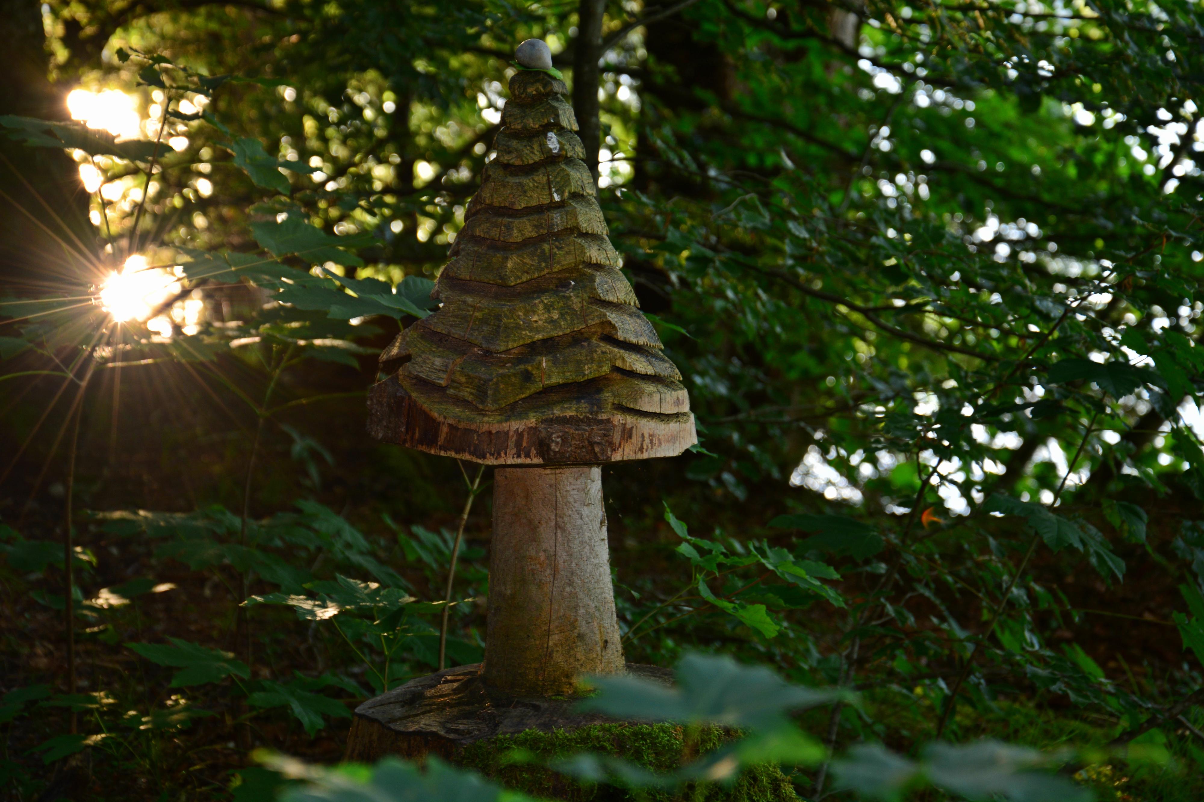 G0258 Holzpilz am Weissensee.jpg