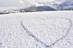 W0256 Pfrontener Schneeherz.jpg