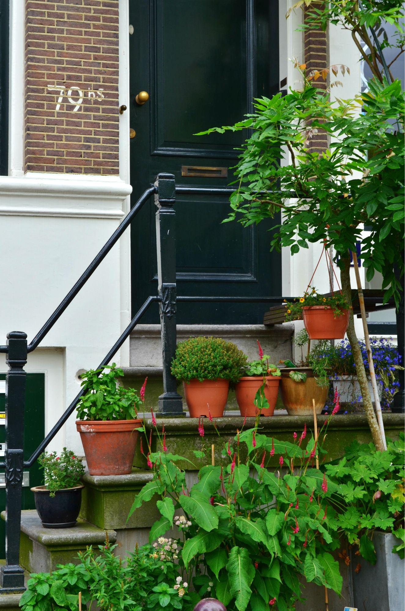 Amsterdam (45).jpg