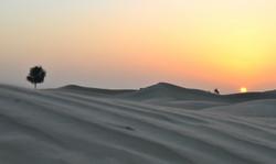 Dubai (81).jpg