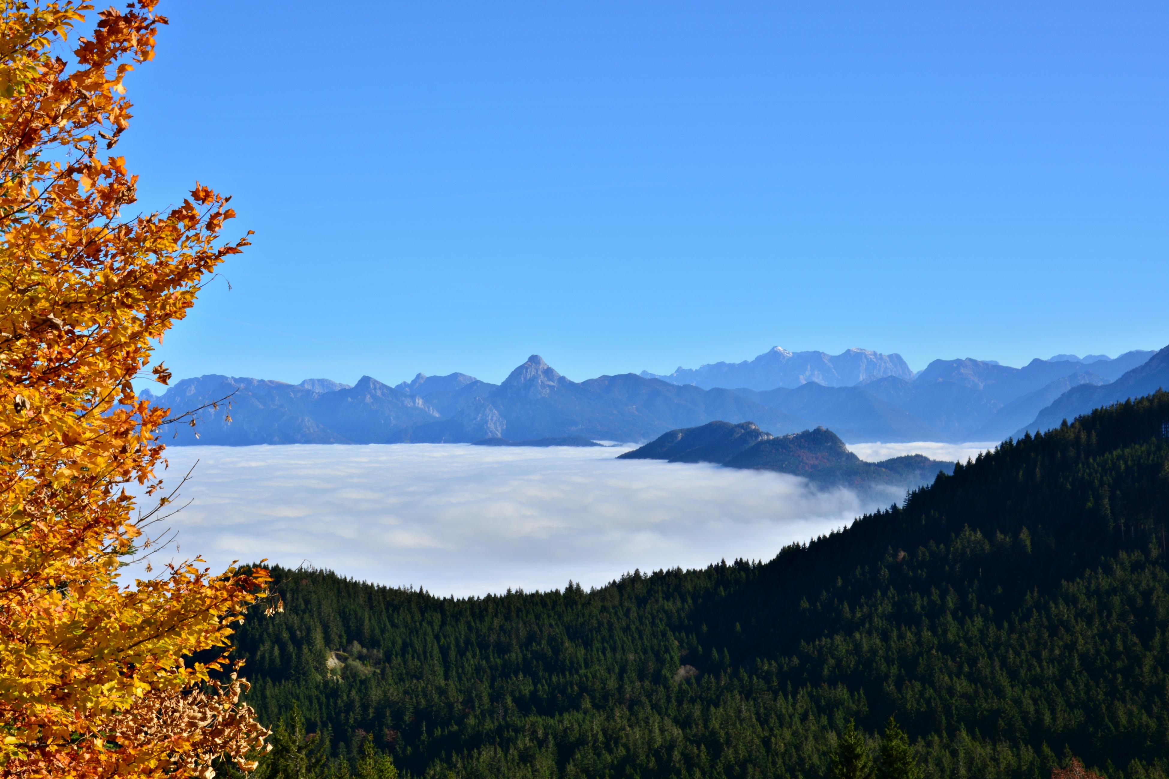 A0163 herbstlicher Blick vom Edelsberg auf das Wolkenmeer im Tal.jpg