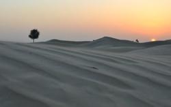 Dubai (83).jpg