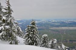 F0040 WinterTegelberg,FrühlingTal