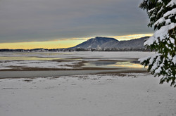 G0228 Wintermorgen am Forggensee.jpg
