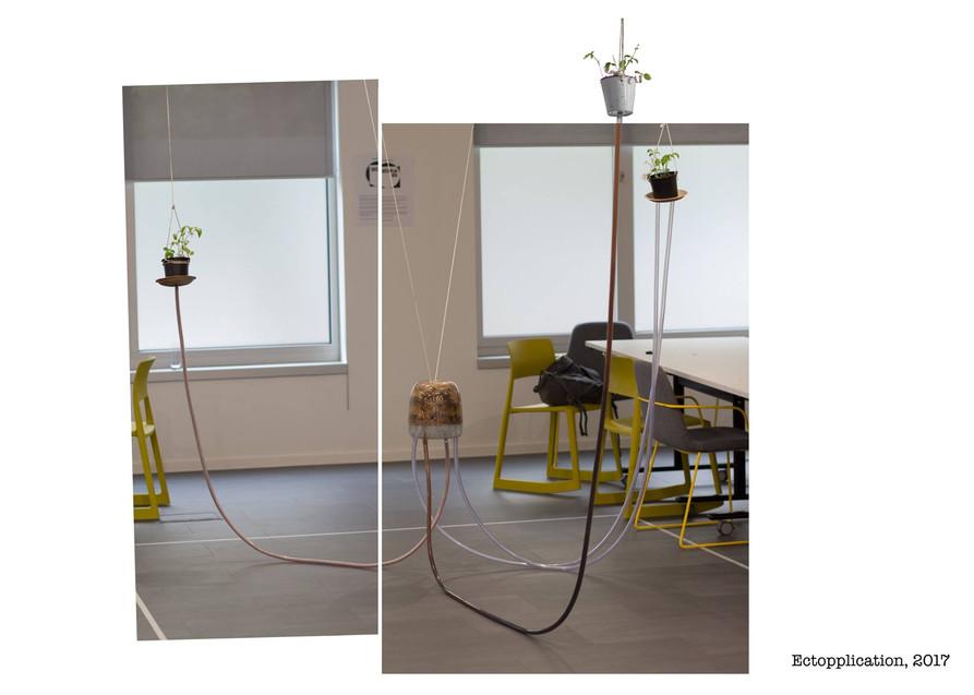 Ectopplication Installation, 2017