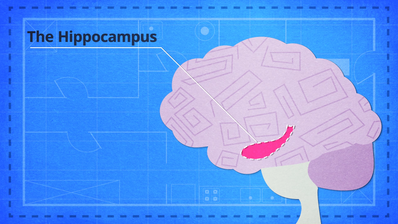 How to Memorize Anything with the Memory Palace