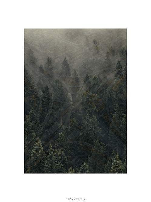 MORE WOODS/NO ROADS © GOOD POSTERS 50X70cm