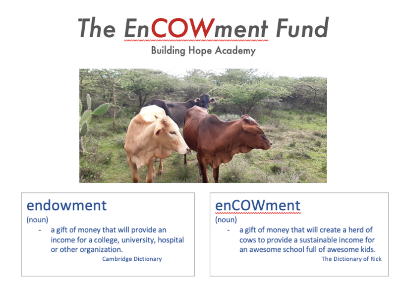 ENCOWMENT FUND HEADER JPG.png