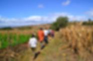 Je voyage à la rencontre des paysans du