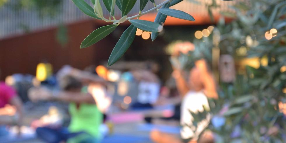 Yoga in Vigna @ Cantina Pizzolato (1)