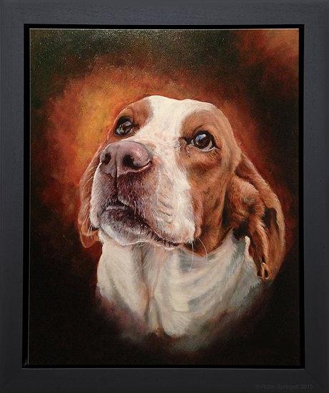 Beagle - ORIGINAL
