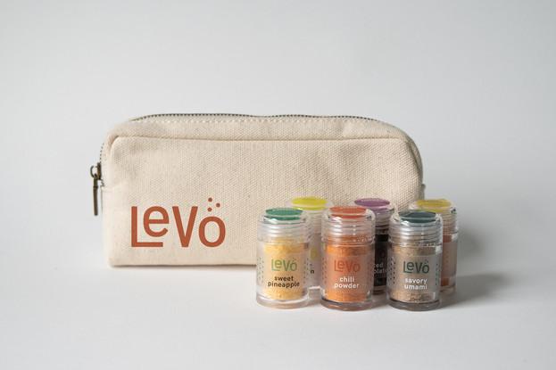 Levo_travel_web.jpg