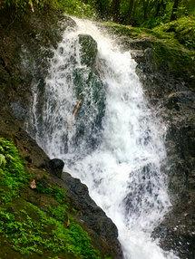 wasserfall in basse-terre