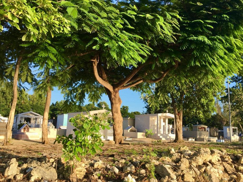 Ein abgelgener Friedhof