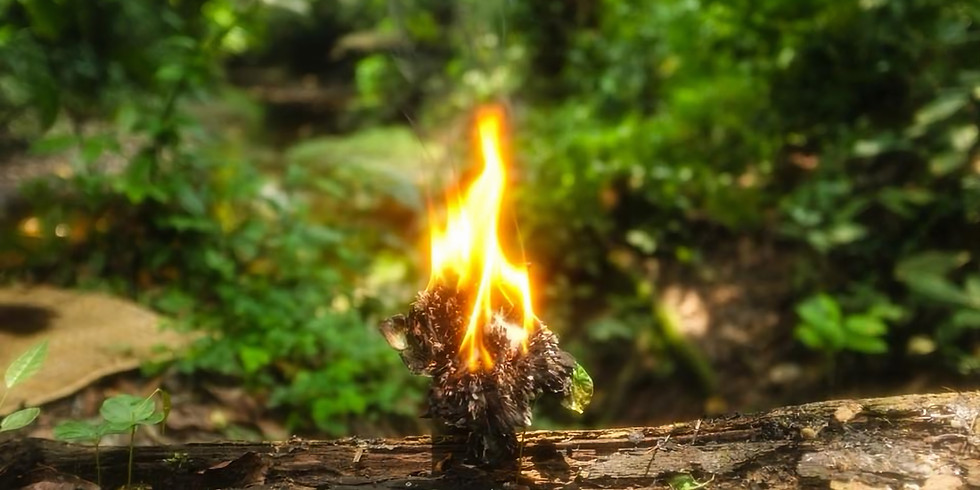 Iboga Ceremony
