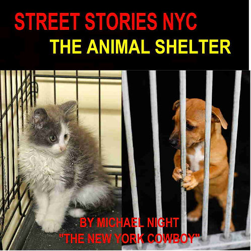Street Stories NYC The Animal Shelter