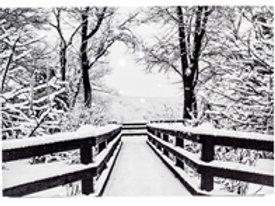 Snowy Railing Light Up Artwork