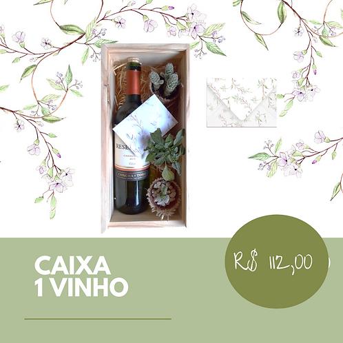 Caixa de Madeira com 1 vinho e suculentas