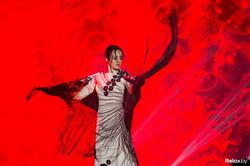 flamenko-dedikova