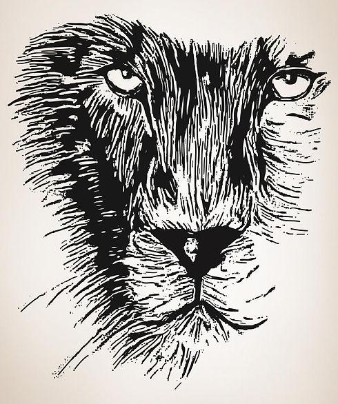 lion Plain_BkGround_836x6066296.jpg