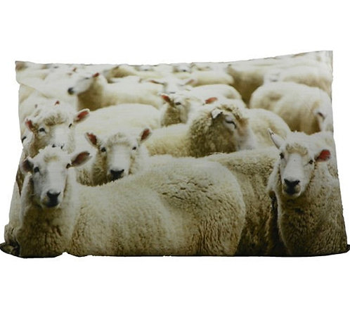 Coussin Moutons