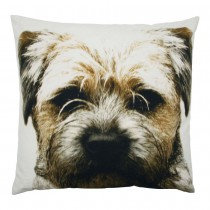 Coussin Terrier